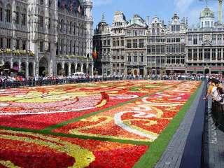 Праздник цветов в Бельгии
