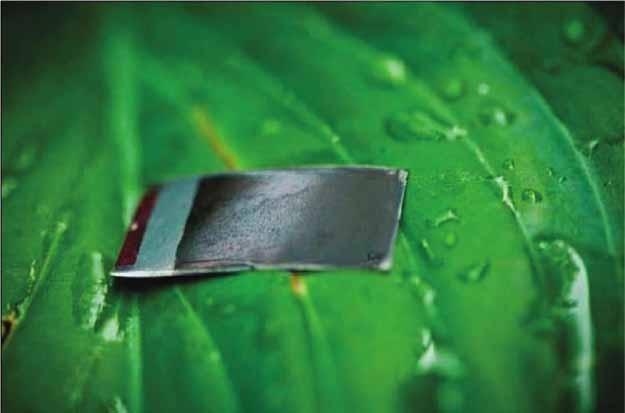 Искусственные листья будут вырабатывать электроэнергию