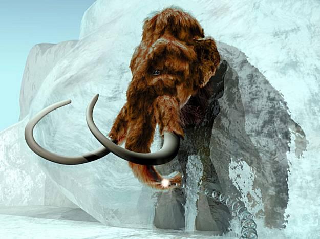 Казавшаяся фантастической идея клонирования мамонта обрела более реальные перспективы в связи с последней находкой в Якутии останков доисторического исполина