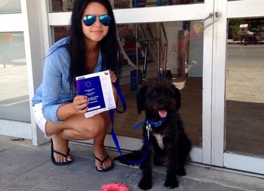 Девушка вернулась в чужую страну, чтобы приютить спасшую ее собаку